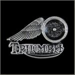 Triumph Motorcycle/Wheel Pin: