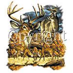 Deer -A10084B