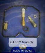 K&L Triumph CARBURETOR REPAIR KIT 1003-0491